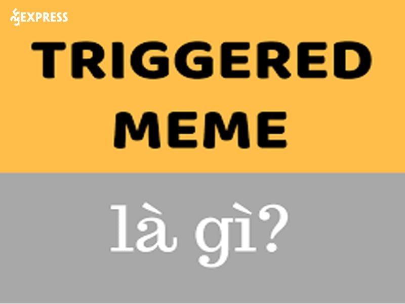 moi-quan-he-giua-triggered-va-meme-co-the-ban-chua-biet-35express