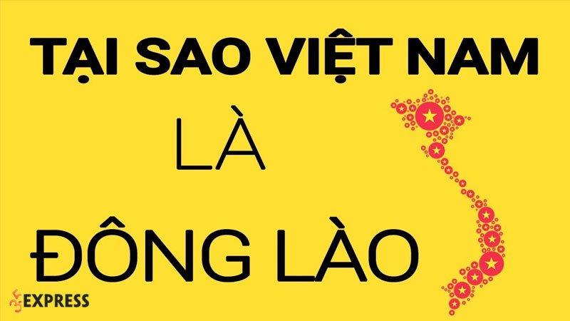 dong-lao-la-gi-35express