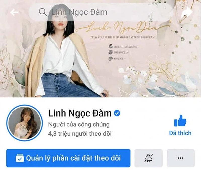 ba-hoang-mxh-linh-ngoc-dam-dat-4-trieu-nguoi-theo-doi-tren-instagram-3-35ẽpress