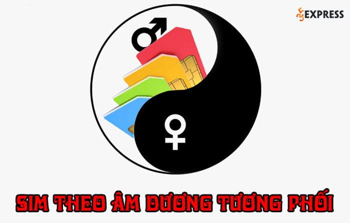 cham-diem-sim-theo-am-duong-tuong-phoi-35express