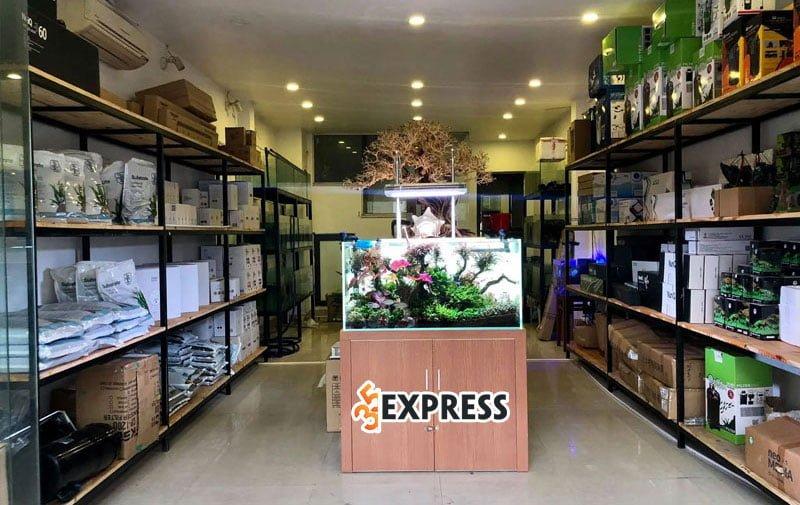 ca-canh-phuc-long-35express