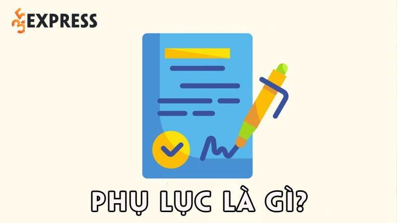 phu-luc-la-gi-35express